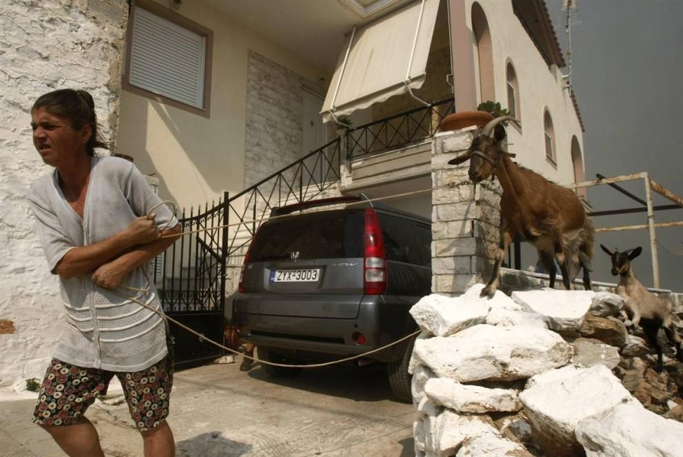 19) Женщина уводит своих коз от огня в деревне Грамматико к северо-востоку от Афин в субботу. (Yiorgos Karahalis/Reuters)