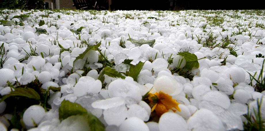 10) Газон в немецком городе Людвигсбург усыпанный градинами вскоре после грозы в четверг, 21 мая 2009. (AP Photo/Thomas Kienzle)