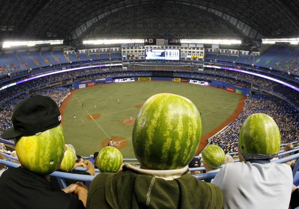 2) Группа фанатов из района Ватерлоо, Онтарио, надев на головы пустые арбузы, наблюдают за бейсбольным матчем между командами «Тампа Бэй Рэйс» и «Торонто Блу Джейс» в Торонто 25 июля.