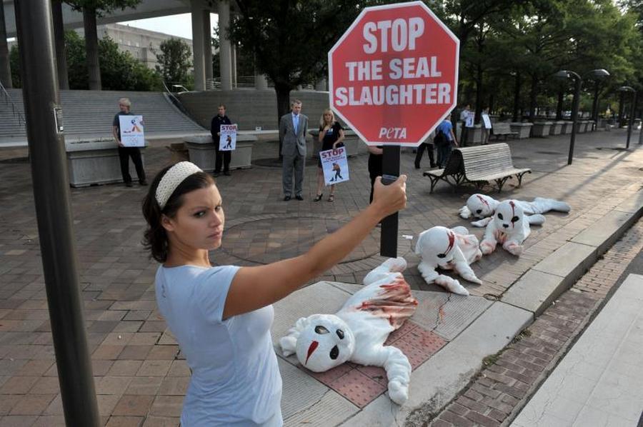3) Акция организации защиты прав животных PETA в рамках проекта борьбы за жизнь детенышей тюленей, убиваемых в Канаде. (UPI/Kevin Dietsch )
