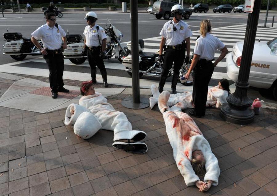4) Полицейские стоят над арестованными активистами PETA в Вашингтоне 16 сентября 2009 года. (UPI/Kevin Dietsch )