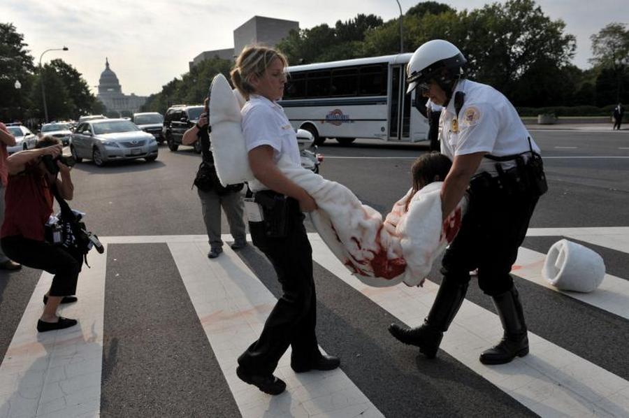 6) Полиция проводит аресты перед посольством Канады.