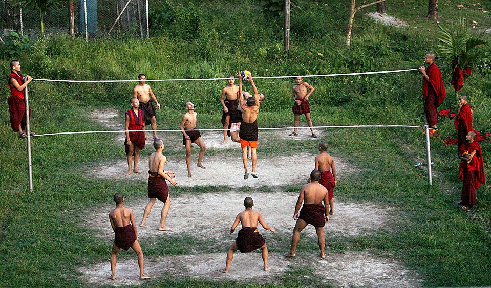 Поздравление днем, картинки прикольные о волейболе