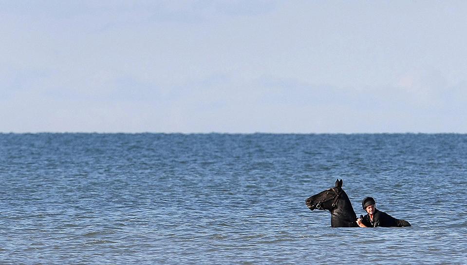 11) Лошадь из Королевской конной артиллерии купается в море возле Блэкпула. Полк привез лошадей в этот район, в качестве отдыха от их обычных церемониальных обязанностей. (Phil Noble/Reuters)