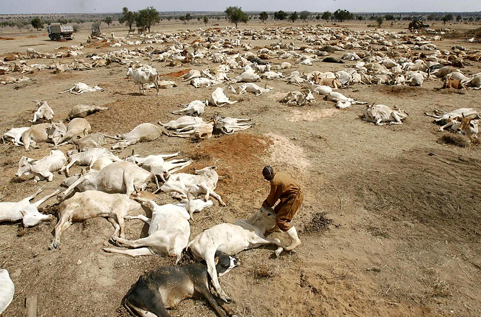 water scarcity in kenya essay