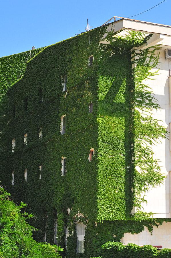 16) Удивительная внешняя сторона одной из стен здания.