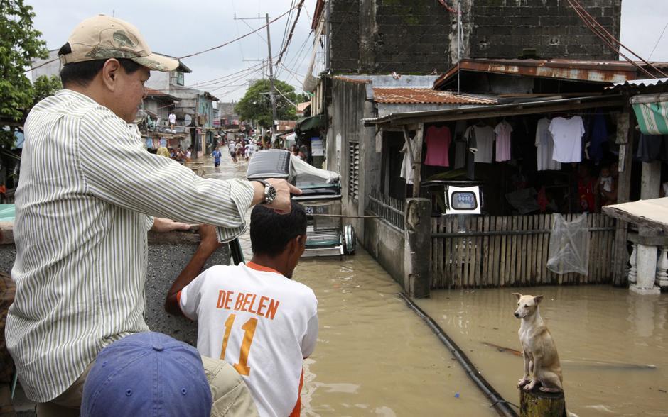 25) Вице-президент Филиппин Ноли де Кастро смотрит на собаку, сидящую на столбе, во время своего визита в затопленный наводнением город Ста Роса, в провинции Лагуна к югу от Манилы.