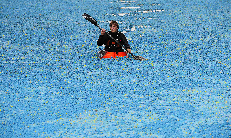 3) Каноист гребет среди тысяч пластиковых уточек по реке Темза на западе Лондона, 6 сентября. Для этой ежегодной благотворительной гонки в воду было запущено около четверти миллиона уточек, в попытке установить новый мировой рекорд. (REUTERS/Toby Melville)
