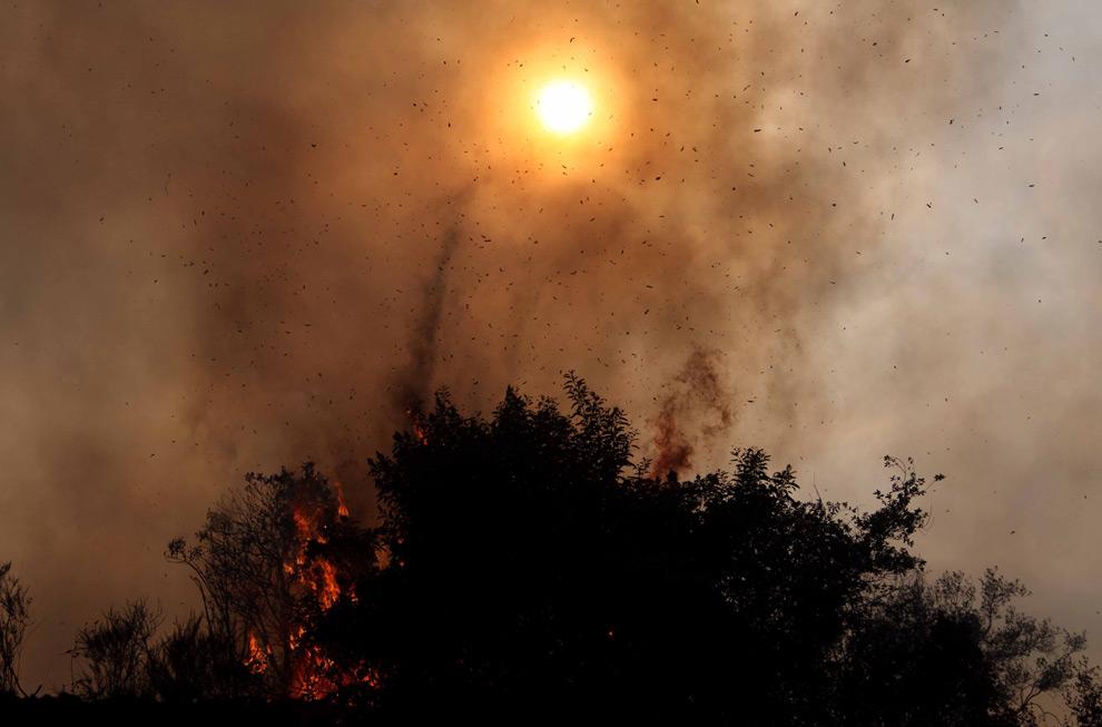 10. Дым, пепел и зола летают в воздухе над каньоном у шоссе №2 в Национальном Калифорнийском заповеднике 28 августа 2009 года недалеко от Ла Канада Флинтридж, Калифорния. (AP Photo/Nick Ut)