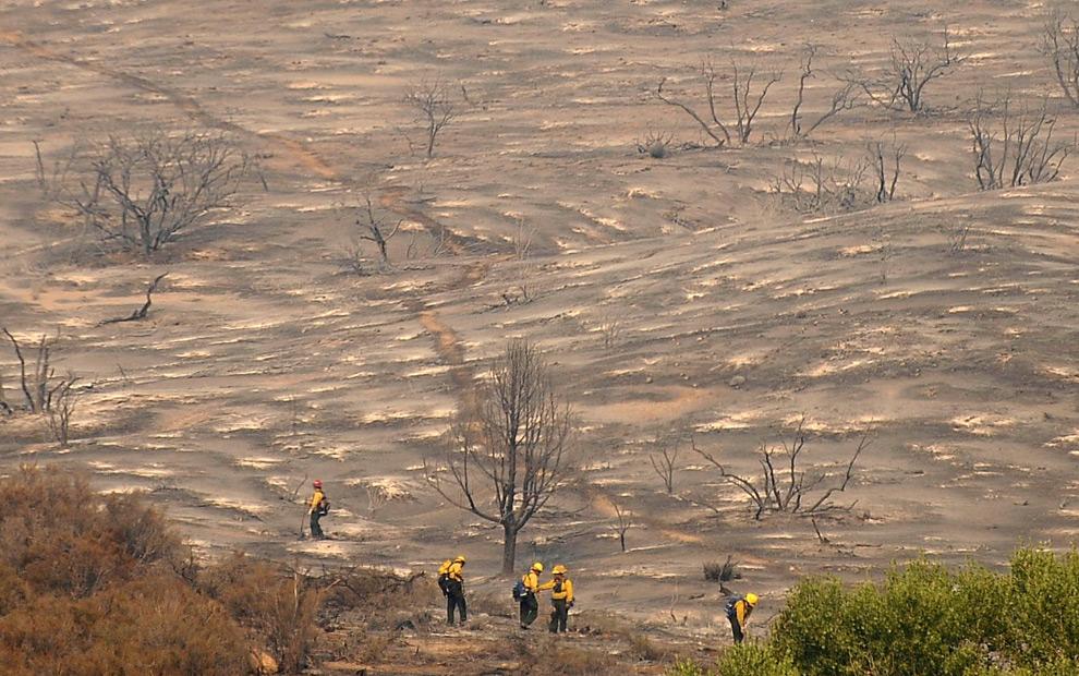 12. Пожарные обследуют сожженную местность в районе Актона в Калифорнии 31 августа 2009 года. (REUTERS/Gene Blevins)
