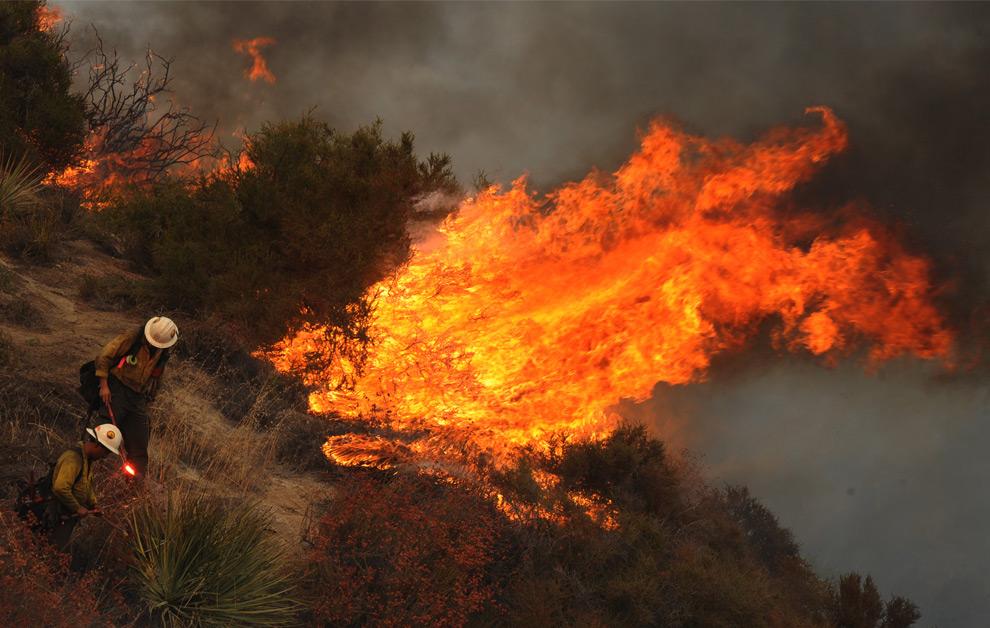 31. Пожарные разжигают встречный пожар в Национальном Калифорнийском заповеднике рядом с пригородом Глендэйла на окраине Лос-Анджелеса 1 сентября 2009 года. (MARK RALSTON/AFP/Getty Images)