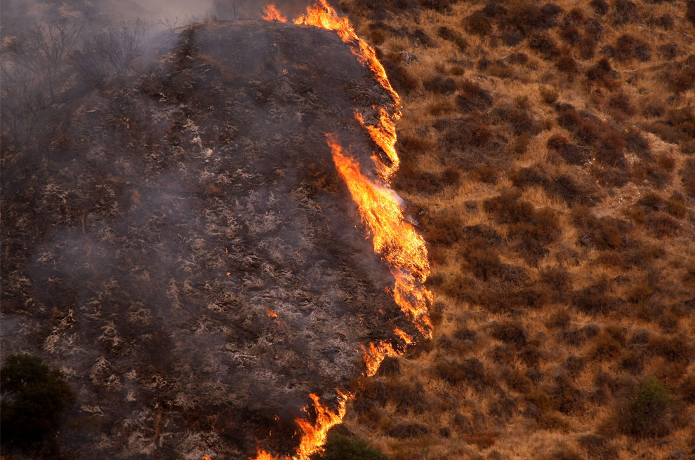 40. Лесной пожар продвигается по низкорослым зарослям 1 сентября 2009 года в Силмаре, штат Калифорния. (Justin Sullivan/Getty Images)