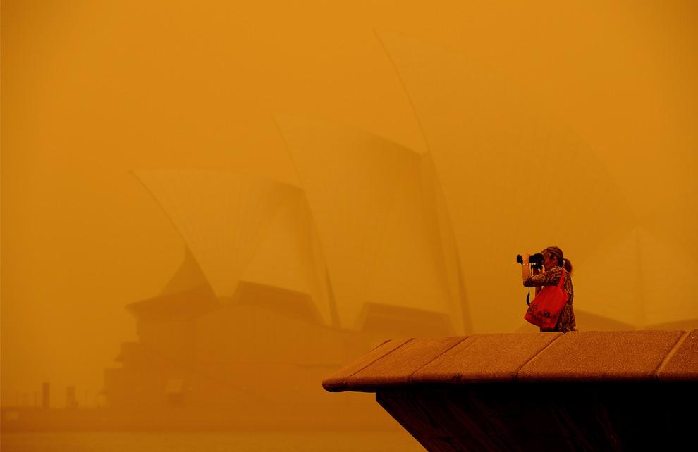 13) Женщина делает фотографию Сиднейского оперного театра, едва заметного сквозь облако пыли, 23 сентября, 2009. (GREG WOOD/AFP/Getty Images)