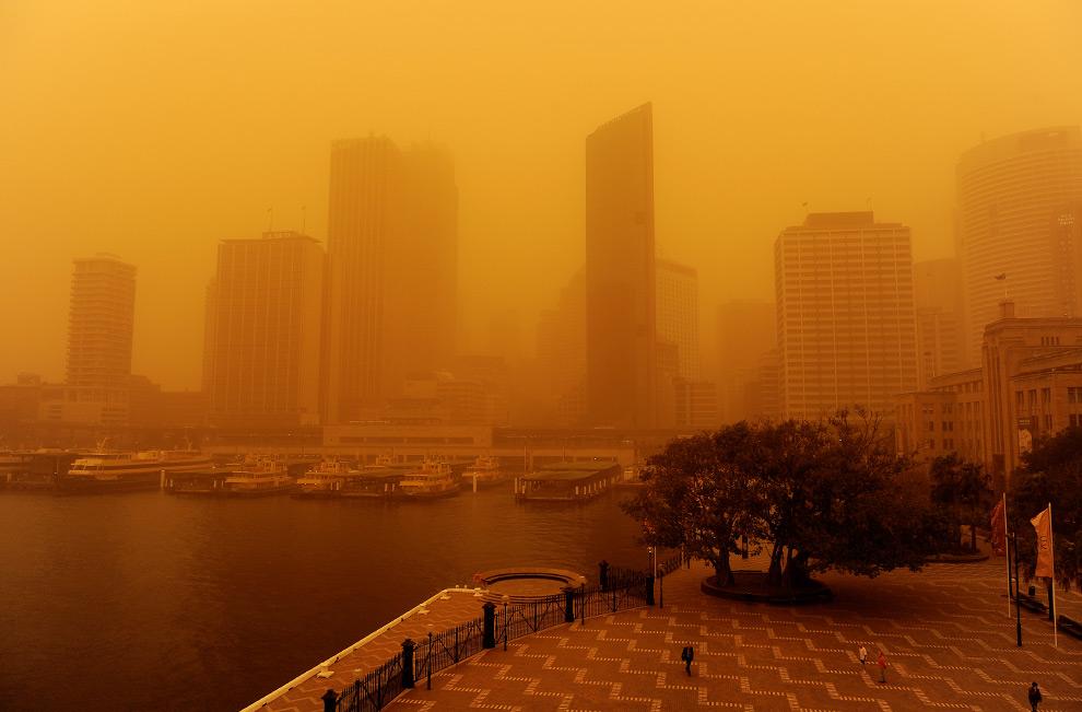 18) Здания делового центра едва заметны сквозь плотную завесу песка, 23 сентября, 2009. (GREG WOOD/AFP/Getty Images)
