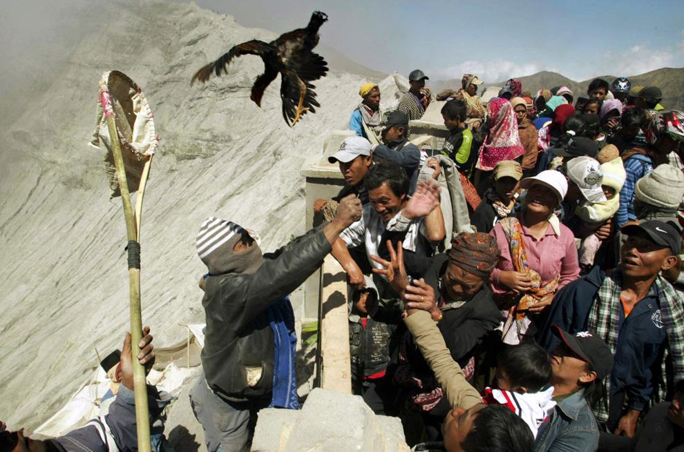 35. Местные жители деревни пытаются поймать курицу, которую верующие бросили в кратер вулкана горы Бромо на празднике Касада в Проболингго, Восточная Ява, в воскресенье 6 сентября 2009 года. Каждый год люди собирают на фестивале подаяния индийским богам в виде риса, фруктов, домашнего скота или денег, которые они бросают в кратер активного вулкана, чтобы попросить благословения и хорошего урожая. (AP Photo/Trisnadi)