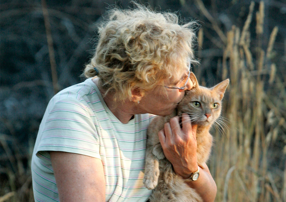 10. Кони Кирчнер целует своего кота Бадди, после того, как  его целым и невредимым после пожара, который уничтожил ее дом в Оберне, штат Калифорния, в понедельник 31 августа 2009 года. Пожар разгорелся в воскресенье, уничтожив 137 гектар земли и почти 50 домов. Кирчнер и ее семье пришлось покинуть свой дом в воскресенье, и семья в спешке забыла кота Бадди. (AP Photo/Rich Pedroncelli)