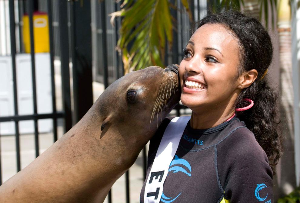 1. Мелат Янте – мисс Эфиопия 2009 – получила поцелуй от морского льва по кличке Кэсси в Атлантисе, остров Парадайз, Багамы, 6 августа 2009 года. (REUTERS/Miss Universe Organization L.P.,LLLP)
