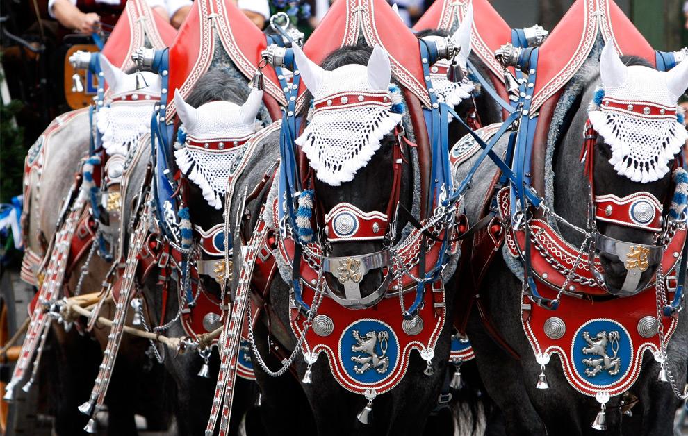 3. Специально украшенные для фестиваля лошади на открытии праздника пива Октоберфест в Мюнхене в субботу 19 сентября 2009 года. (AP Photo/Matthias Schrader)