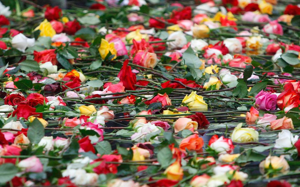 38. Цветы заполнили бассейн во время восьмой годовщины терактов 11 сентября в Нью-Йорке и Вашингтоне. Снимок сделан в Нью-Йорке 11 сентября 2009 года. (REUTERS/Chip East)