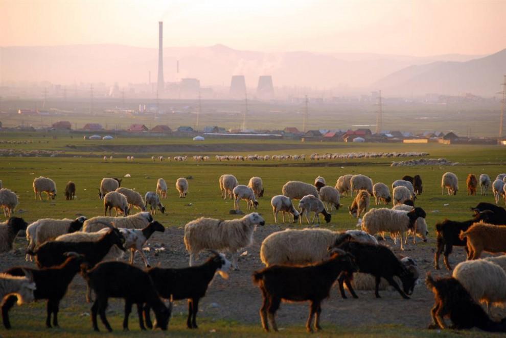 1. На этом снимке, сделанном ранним утром на окраине Улан-Батора – столицы Монголии – запечатлена картина, которая отражает всю переменчивую суть Монголии: природа в противовес современному развитию. (Adrienne Mong/NBC News)