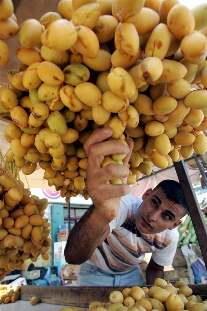 2. Торговец овощами и фруктами из Палестины выкладывает свежие финики на продажу на западном берегу реки Иордан в Дженине в субботу. Финики – традиционная пища в Рамадан, так как по легенде пророк Мухаммед ужинал ими каждый вечер. (Saif Dahlah/AFP - Getty Images)