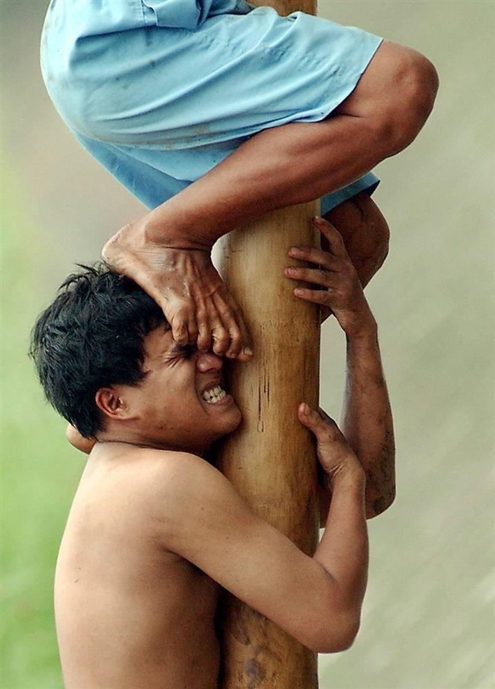6) Двое мужчин из Восточной Джакарты, Индонезия, пытаются влезть на смазанный жиром бамбуковый шест, чтобы добраться до подарков. Этот конкурс был частью в п разднованиях в ознаменование Дня независимости Индонезии 18 августа. (Weda/AFP)