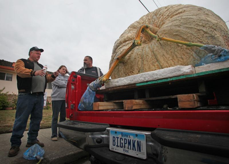 1) Дон Янг (слева) из Де Мойн, штат Айова ждет в очереди на взвешивание на Конкурсе на самую большую тыкву в Хаф Мун Бей 12 октября 2009 года. (UPI/Terry Schmitt)