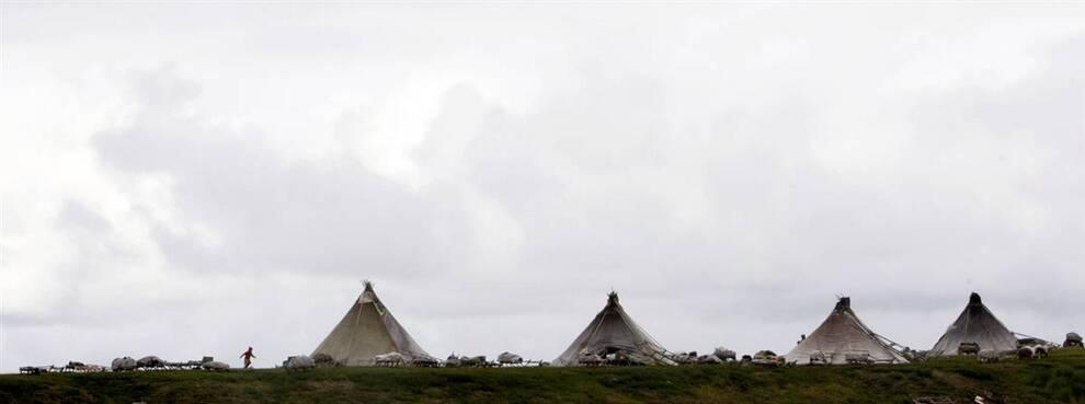 2. Ненцы живут в палатках на полуострове Ямал, входящем в полярный круг, в 2 011 км к северу от Москвы. Каждый год ненцы мигрируют с севера на юг на более чем 160 км. Они проводят на одном месте всего несколько дней, выживая за счет оленей и рыбы. (Denis Sinyakov/Reuters)
