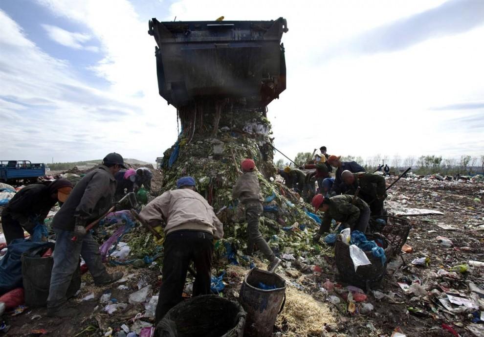 9. Грузовик вываливает мусор, который тут же сортируется рабочими на свалке в Чанчуне. Спустя тысячелетие в образе сельского общества Китай начинает урбанизироваться. Занятые семьи все чаще отказываются от свежей пищи в пользу полуфабрикатов, потребление которых возросло на 10,8% с 2000 по 2008 годы, что на 4,2% больше, чем в Азии. К 2013 году рынок полуфабрикатов и фасованных пищевых продуктов может вырасти до 195 миллиардов долларов – на 74% больше, чем в этом году. (AP)