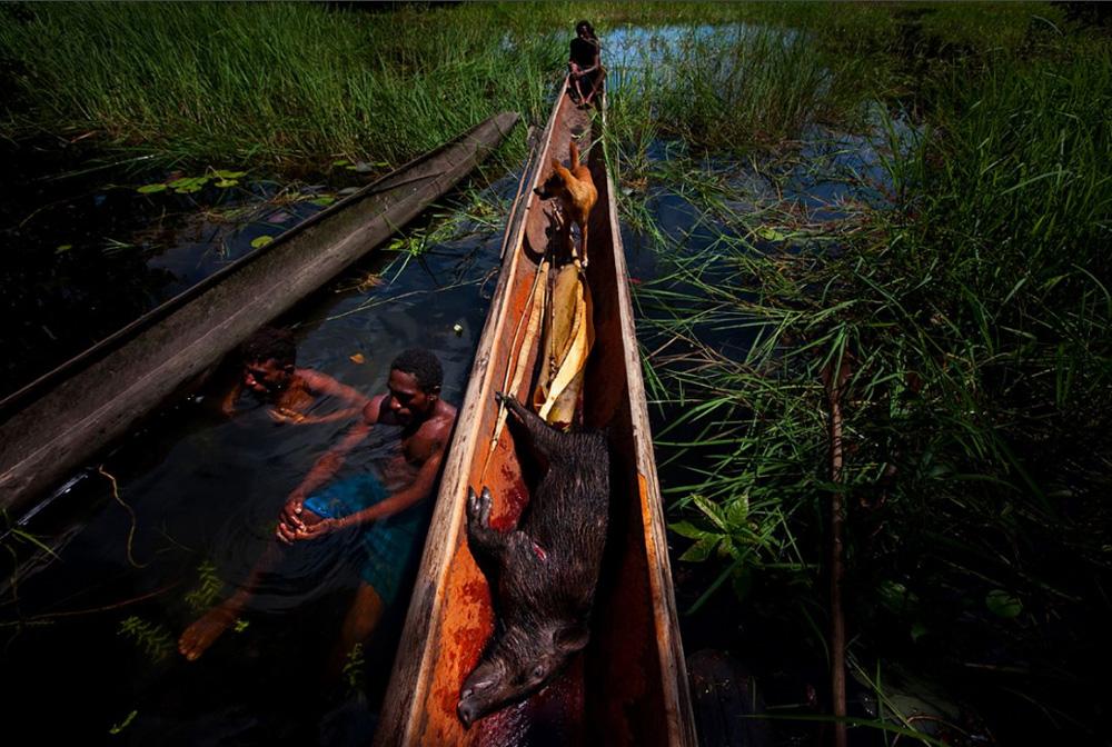 17. Охотники поймали дикого кабана и кузуара в отдаленном регионе вдоль берегов озера Мюррей 1 января 2009 года. (Brent Stirton/Getty Images)