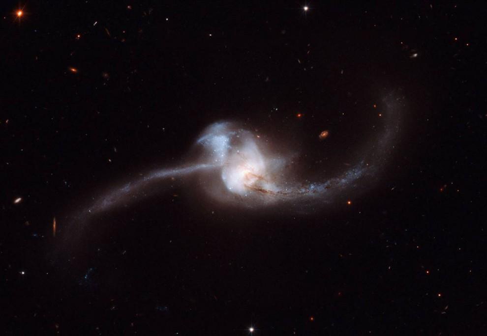 19. На этом снимке, сделанном космическим телескопом «Хаббл», можно видеть две галактики, сливающиеся в одну прекрасную массу, известную, как NGC 2623. Снимок, основанный на данных, полученных в 2007 году, был опубликован 13 октября. (A. Evans / Stony Brook University / NASA / ESA)