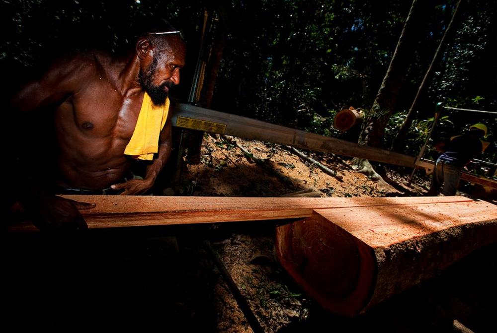 19. Экологическая заготовка леса, которое выполняет небольшая группка людей. Они рубят только то, что нужно, и приносят на место небольшую переносную мельницу. (Brent Stirton/Getty Images)