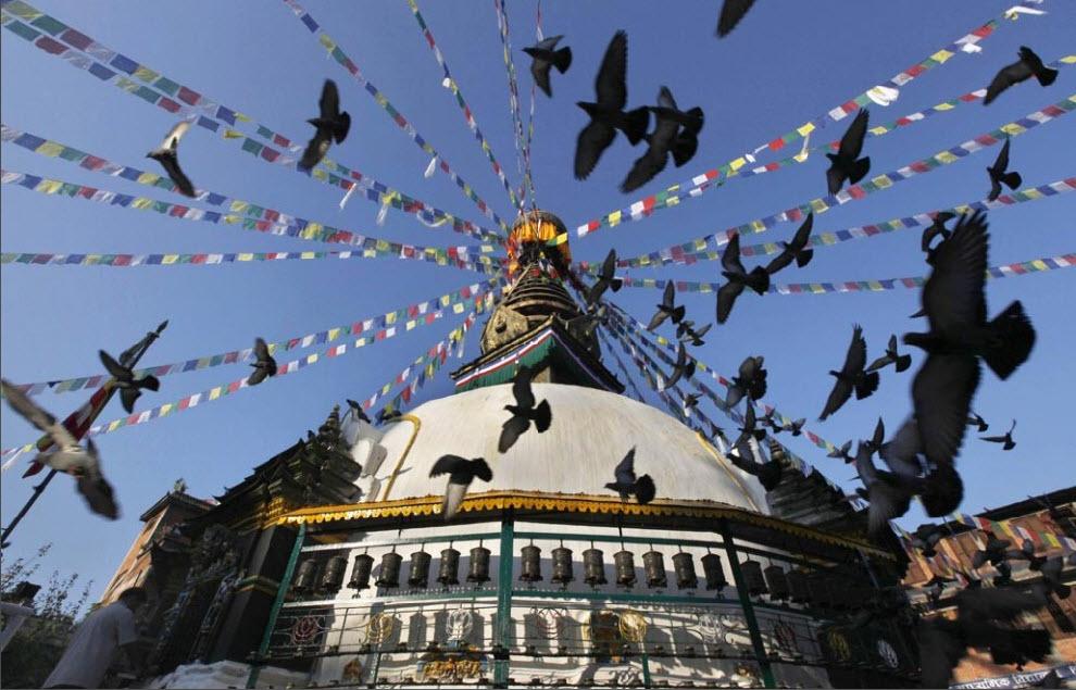 14) Голуби летят над буддийской ступой в Катманду, Непал, 2 октября. (Gemunu Amarasinghe, AP)