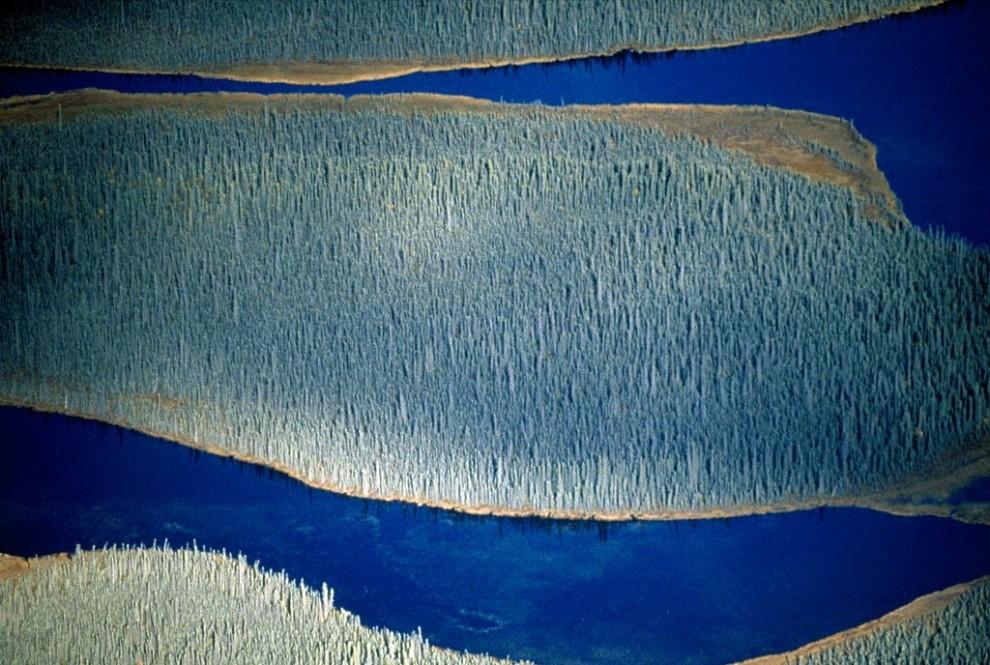 9) Водные потоки в Национальном парке Врангель-Сент Элиас на Аляске. Самый крупный среди национальный парков США, Врангель-Сент Элиас представляет собой крупнейшее скопление ледников в Северной Америке. (Frans Lanting)
