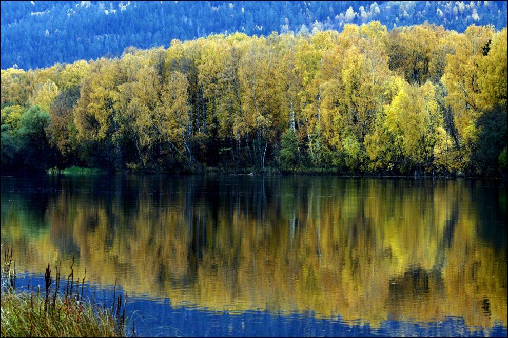 2) Осенняя листва отражается в реке Драмменсельва возле Драммена в восточной Норвегии 13 октября. (AFP/Lise Aserud)