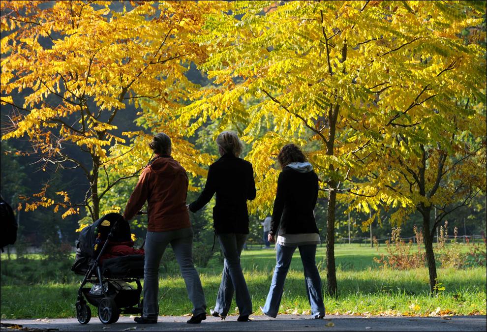 Человек гуляет в парке картинка