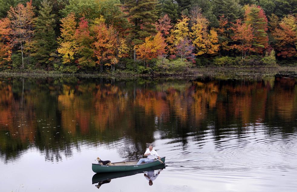 1. Питер Стерретт из Тивертона плывет со своей собакой Коди в озере Дерри на фоне осеннего убранства деревьев в воскресенье утром 4 октября. (AP / Charles Krupa)