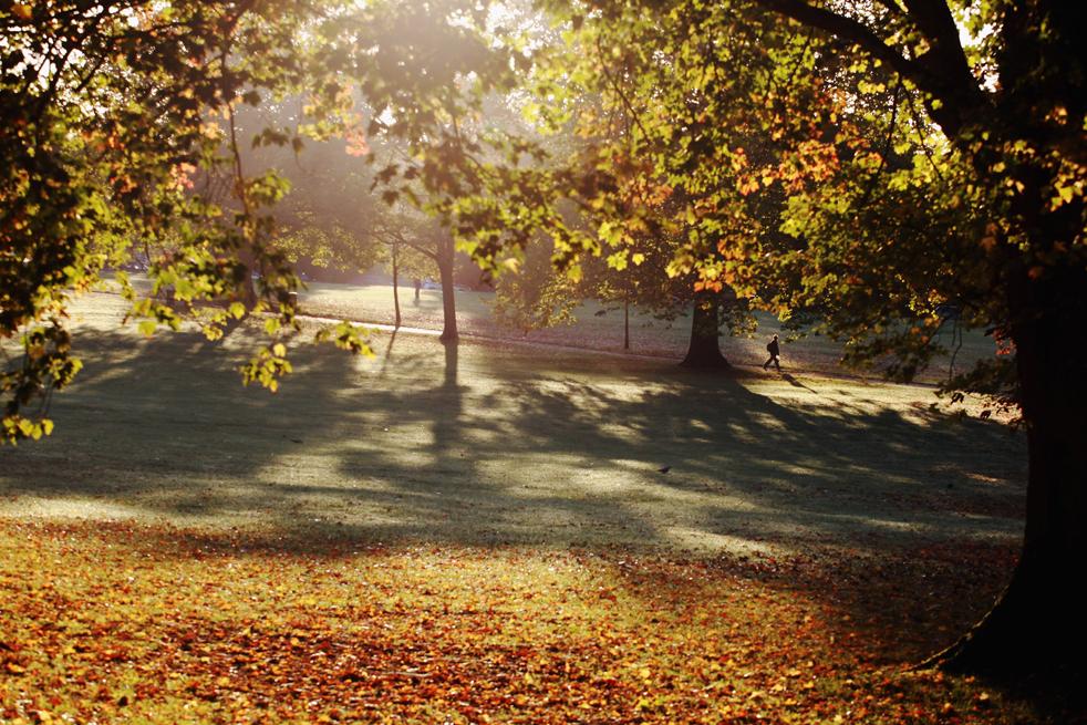5. Человек идет под деревьями в лучах утреннего солнца, прорывающихся сквозь листву, которая уже начинает менять цвет в парке Виктория 12 октября в Бате, Англия. (Getty Images / Matt Cardy)