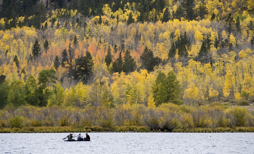 10. Группа людей гребет в рыбацкой лодке к берегу на фоне яркой осенней листвы на озере Коттонвуд недалеко от Буэна Виста, штат Колорадо, во вторник 29 сентября. (AP / Nathan Bilow)