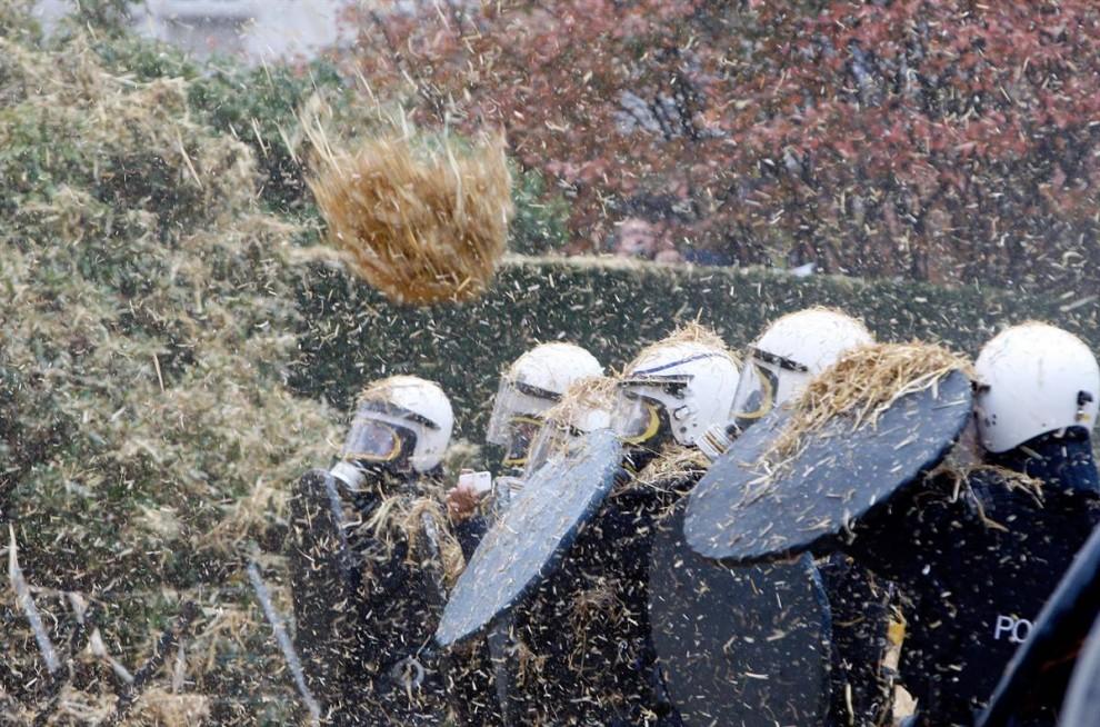 10) Бельгийская полиция по охране общественного порядка закрываются от сена, которой их забрасывают молочные фермеры во время демонстрации у здания штаб-квартиры Европейского совета в Брюсселе. Производители молока из разных стран Европы выступили против снижения цен на молоко. (Thierry Roge/Reuters)