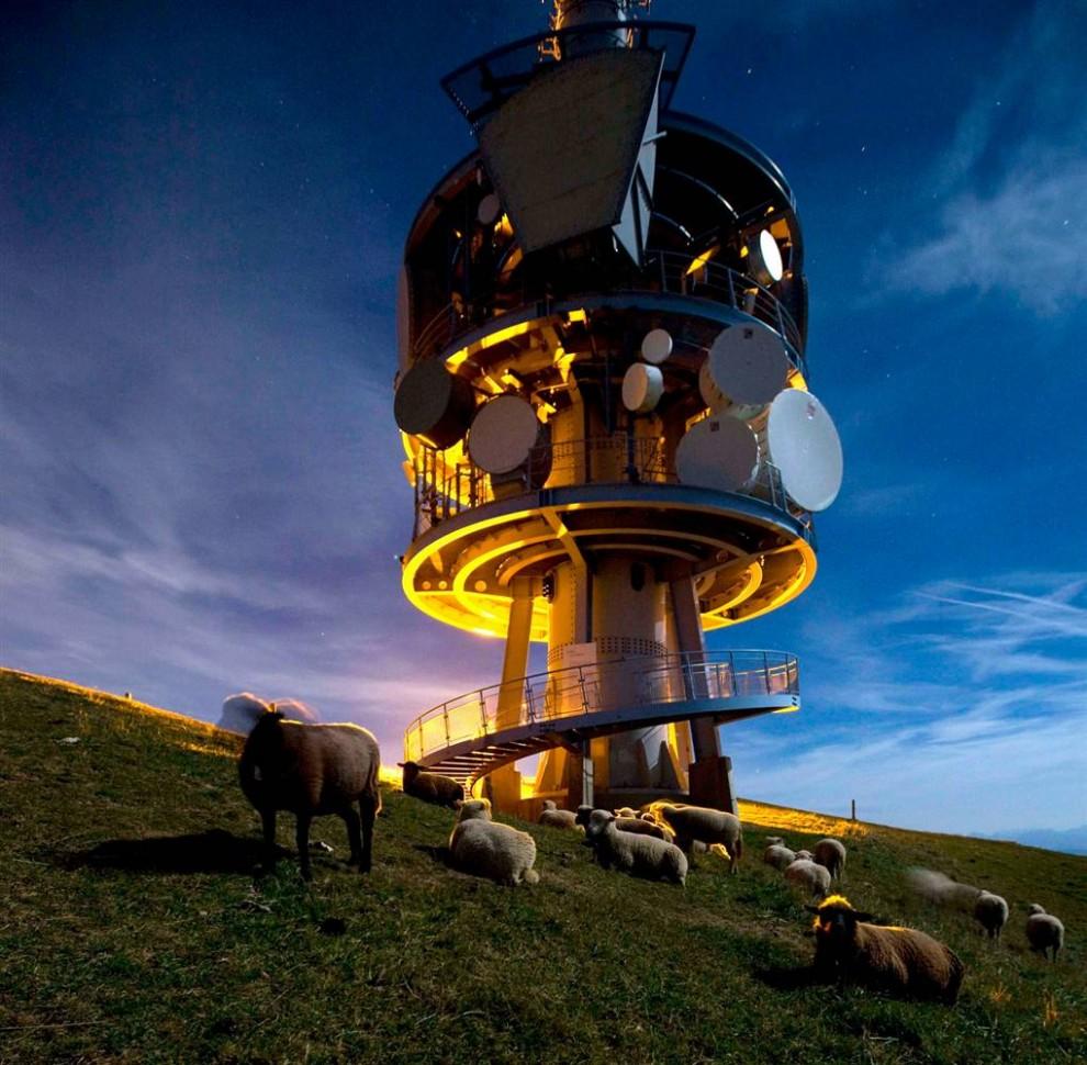7) Овцы собрались вокруг телекоммуникационной башни на горе. Рига в центральной Швейцарии. (Alessandro Della Bella/A)