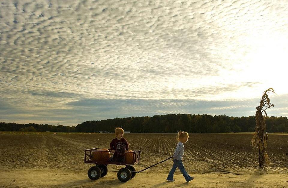 8. Девочка везет своего брата и несколько тыкв на тележке после посещения тыквенной фермы 22 октября в Истоне, штат Мэриленд. (Jim Watson, AFP / Getty Images)