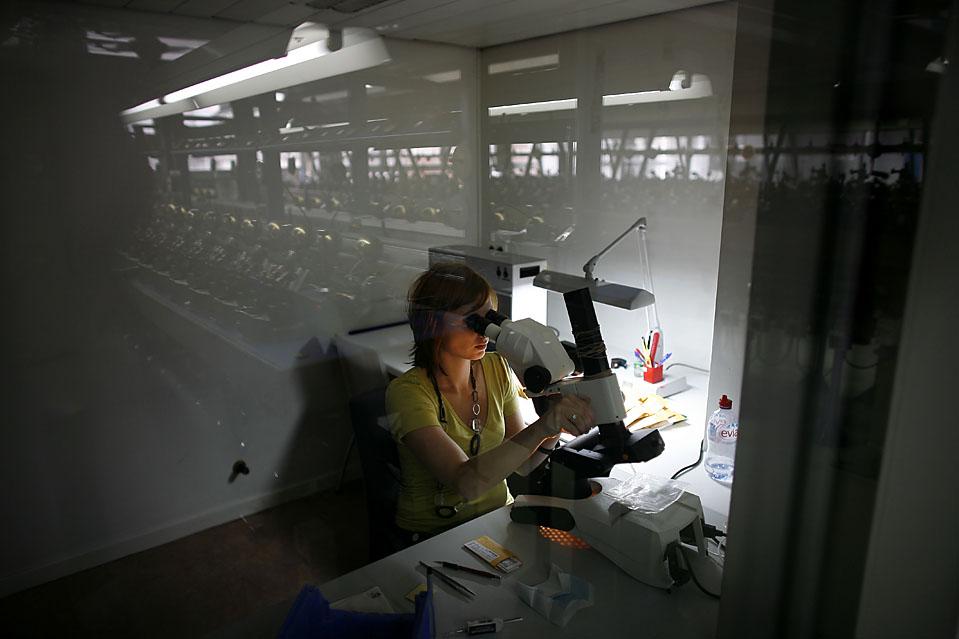 8. Женщина работает за мощным микроскопом в отделении для резки алмазов компании «Tiffany & Co. Laurelton Diamonds» в Антверпене. (Pierre Terdjman/Gamma for The Wall Street Journal)