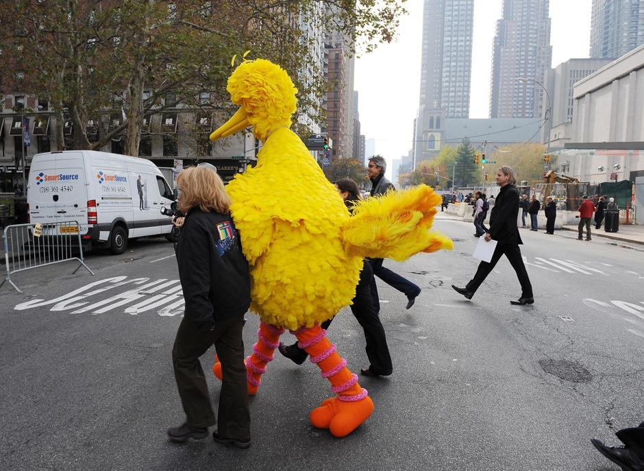 3. 9 ноября 2009: Большая Птица переходит улицу West 64th Street и Бродвей в Нью-Йорке накануне 40-летия детского телешоу «Улица Сезам».