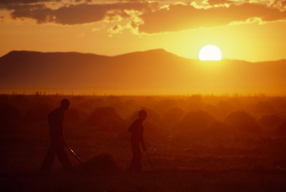 4. Стога сена на пшеничном поле в Малазгирте, Турция. На переднем плане двое рабочих утопают в лучах оранжевого заката. (James Stanfield)