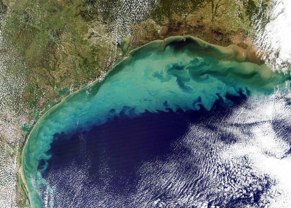 5. Облако осадков окрасило Мексиканский залив 10 ноября, когда устройство отображения на спутнике НАСА «Аква» сделало этот снимок. Большая часть цвета исходит от перерастворенных осадков, поднявшихся с морского дна на мелководье. Окрашенная осадками вода переходит в более чистый черно-голубой цвет недалеко от края материковой отмели, где воды становятся глубже. (Jeff Schmal / NASA)