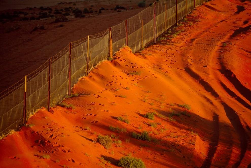 7. Оранжевый закат освещает песок возле знаменитого австралийского забора динго – ограды в 5400 км, который проходит по пустынной территории и защищает домашний скот от диких собак. (Medford Taylor)