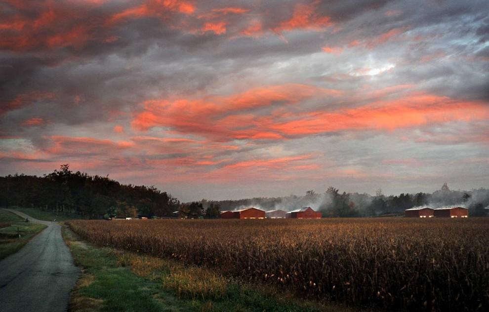 7. Дым поднимается от помещений для сушки табака ранним утром на ферме Гэри Брэйма недалеко от Мэйфлида, Кентукки. Брэйм выращивает домашний скот и соевые бобы, кукурузу и табак. (John Adkisson/2009 Mountain Workshops)