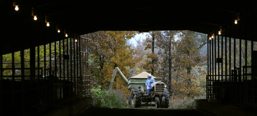 8. Гэри Брэйм из Мэйфилда, Кентукки, наполняет кормушки для домашних животных на ферме. (John Adkisson/2009 Mountain Workshops)