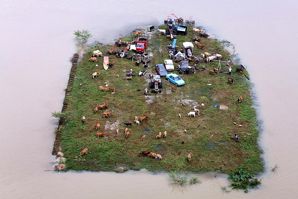14) Незатопленный клочок земли, на котором ютятся коровы и машины, окруженный паводковыми водами в деревне Джерам Педрас в Малайзии. Сотни жителей деревни были временно эвакуированы из района из-за наводнения, которое положило начало ежегодного сезона муссонных дождей. (Fathil Asri/Agence-France Presse/Getty Images)